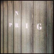 NPRIG