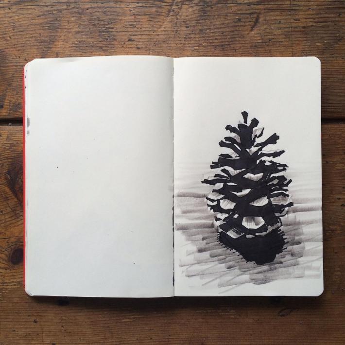 Pine Cone Inktober