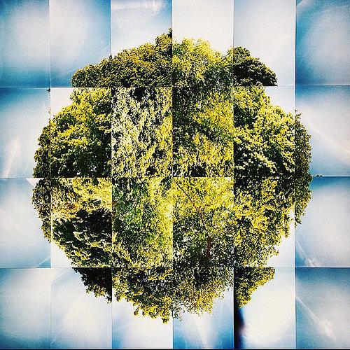 Treeball